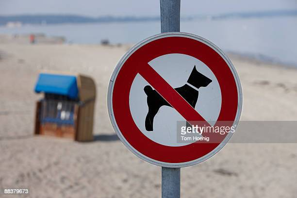 germany, baltic sea, timmendorfer strand, dogs forbidden sign, close-up - verboten stock-fotos und bilder