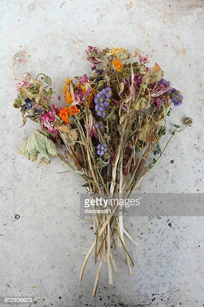 Germany, Bavaria, A bunch of withered field flowers and pink roses on a grey slab