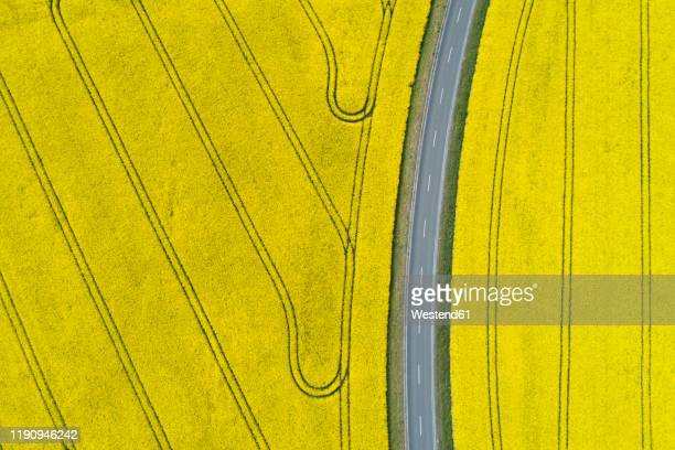 germany, bavaria, aerial view of empty highway between vast rapeseed fields in spring - brassica napus l - fotografias e filmes do acervo
