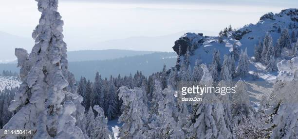 Germany, Bavaria, Bavarian Forest in winter, Great Arber