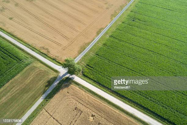 germany, bavaria, drone view of road intersection between countryside fields in summer - crossing stock pictures, royalty-free photos & images
