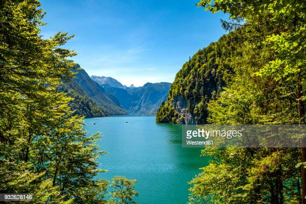 germany, bavaria, lake koenigssee - berchtesgadener land stock photos and pictures