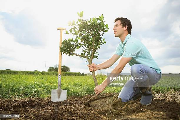 germany, bavaria, mid adult man planting tree on field - mid volwassen mannen stockfoto's en -beelden