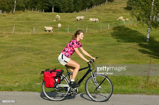 germany, bavaria, mittenwald, woman mountain biking, flock of sheep in background - 数匹の動物 ストックフォトと画像