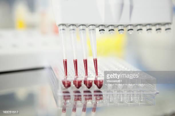 Germany, Bavaria, Munich, Blood analysis in multichannel pippette