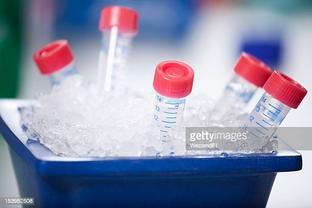 germany, bavaria, munich, test samples stored in ice - crushed ice stock pictures, royalty-free photos & images