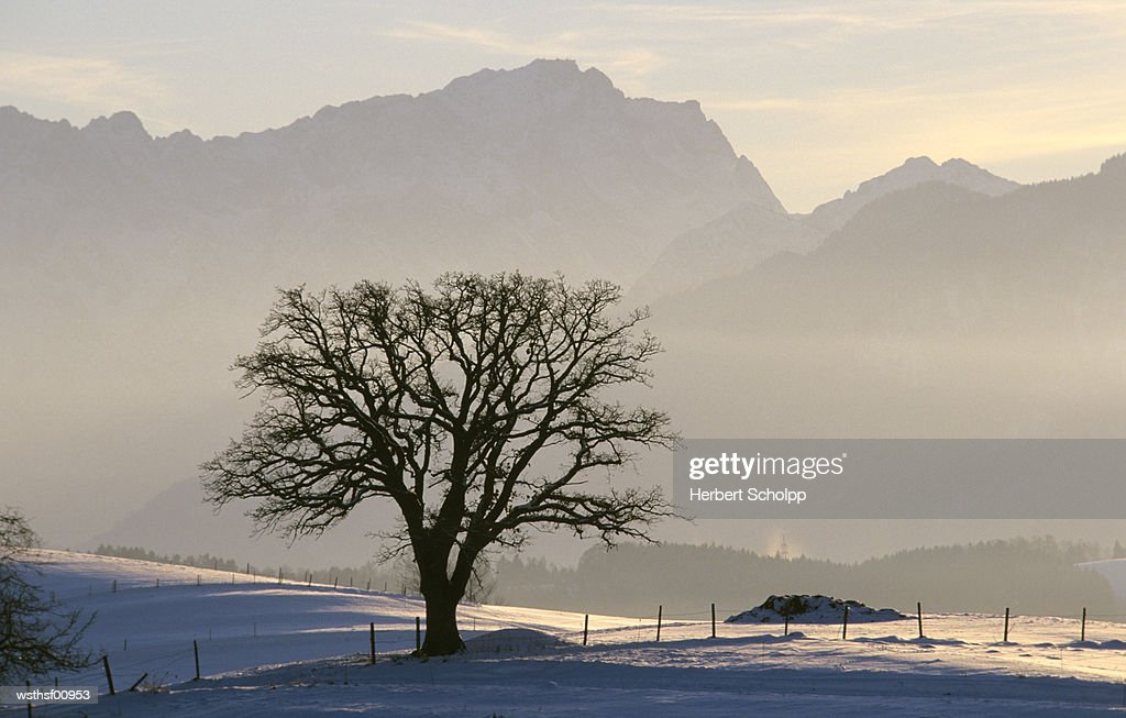 Germany, Bavaria, Murnauer Country with Zugspitze in background, highest mountain in Germany : ストックフォト