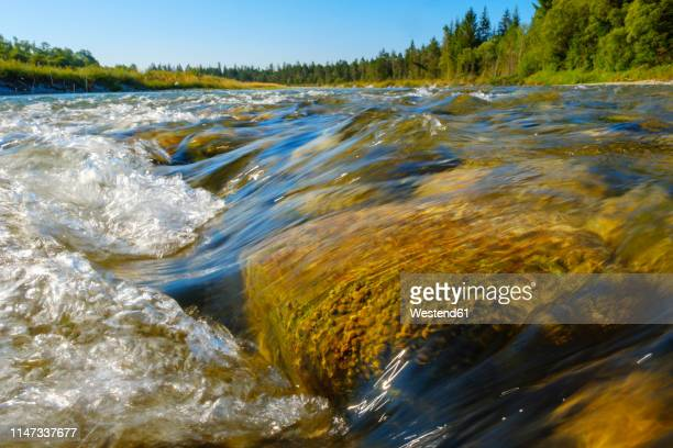germany, bavaria, nature reserve isarauen, streaming clear water of isar - fiume isar foto e immagini stock
