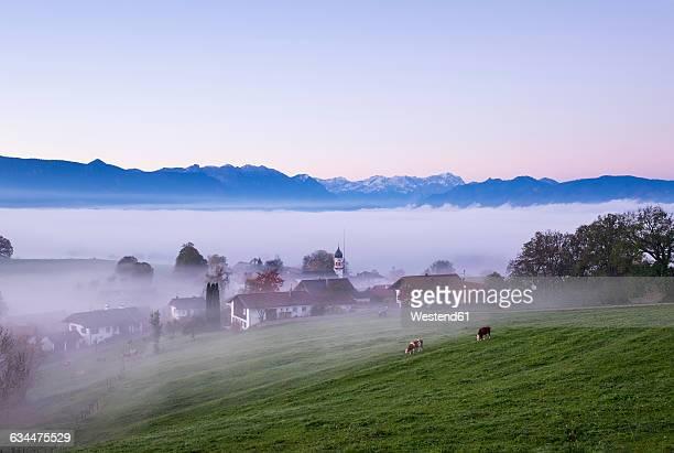 Germany, Bavaria, Pfaffenwinkel, Aidling, Aidlinger Hoehe, morning fog, morning twilight