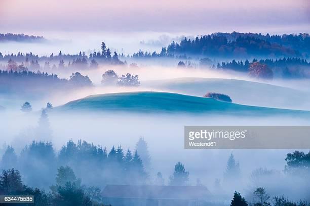 Germany, Bavaria, Pfaffenwinkel, Aidling, Aidlinger Hoehe, morning fog