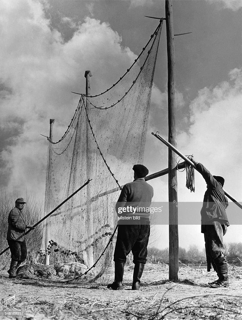 Germany Bavaria Regensburg - Fishermen drying their fishing nets at the bank of the Danube - 1950ies : News Photo