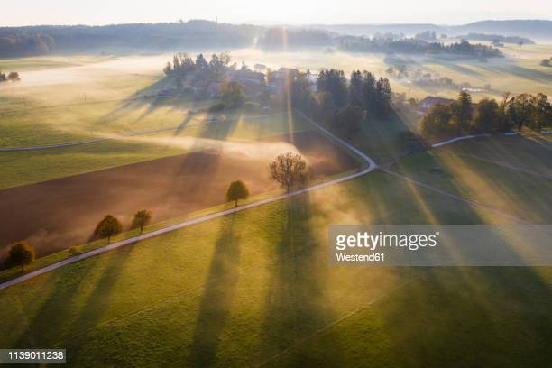 germany, bavaria, ried near dietramszell, ground fog at sunrise, drone view - villaggio foto e immagini stock
