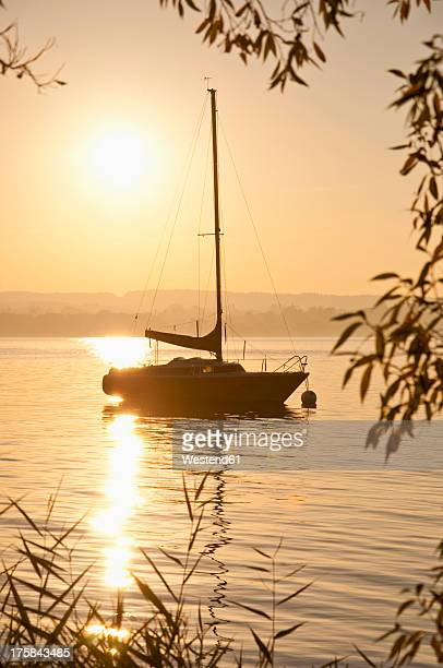 Germany, Bavaria, Sailing boat on Lake Ammersee, reed in foreground