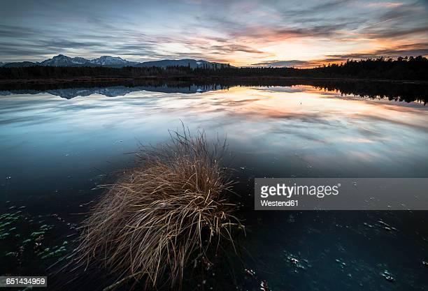Germany, Bavaria, Schoenramer Moor at sunset