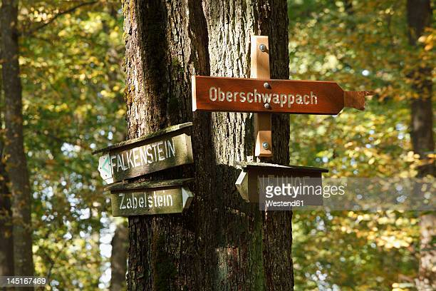 Germany, Bavaria, Signposts in forest