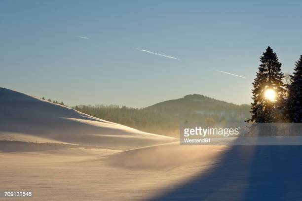 Germany, Bavaria, sunrise at Auerberg in winter