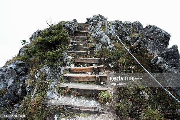 germany, bavaria, trail steps on jenner mountain, low angle view - berchtesgadener land stock photos and pictures