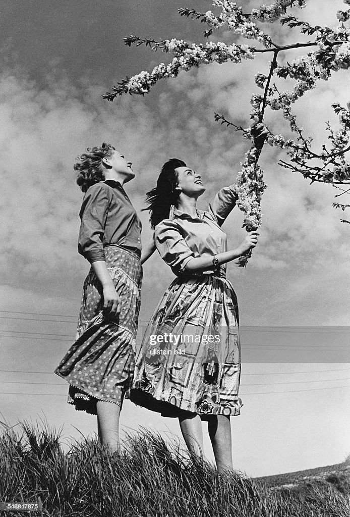 Germany Bavaria - two woman at a blooming tree - 1950s : News Photo