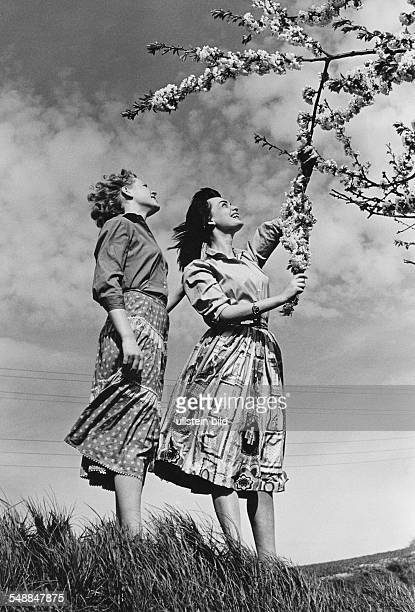 Germany Bavaria two woman at a blooming tree 1950s