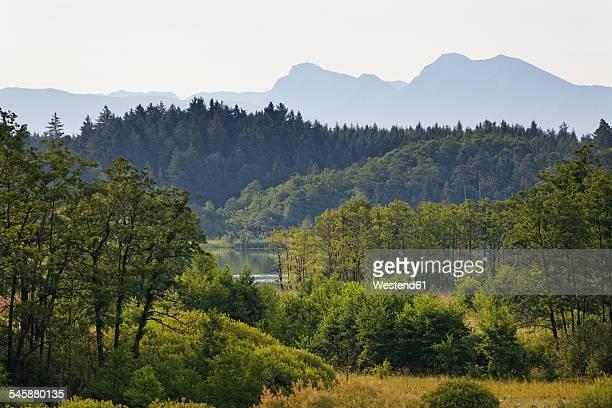 Germany, Bavaria, Upper Bavaria, Chiemgau, Eggstaett-Hemhofer lake district, View to Lake Pelhamer See