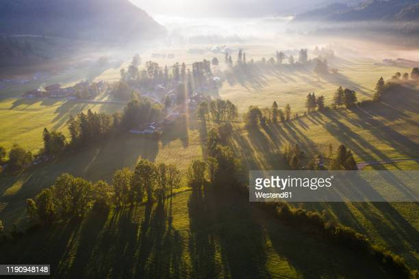 germany, bavaria, upper bavaria, isarwinkel, jachenau, rural landscape in fog at sunrise - bauernhof stock-fotos und bilder