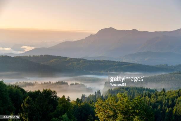Germany, Bavaria, Upper Bavaria, Pfaffenwinkel, near Murnau, morning fog above Aidlinger Hoehe in front of Herzogstand