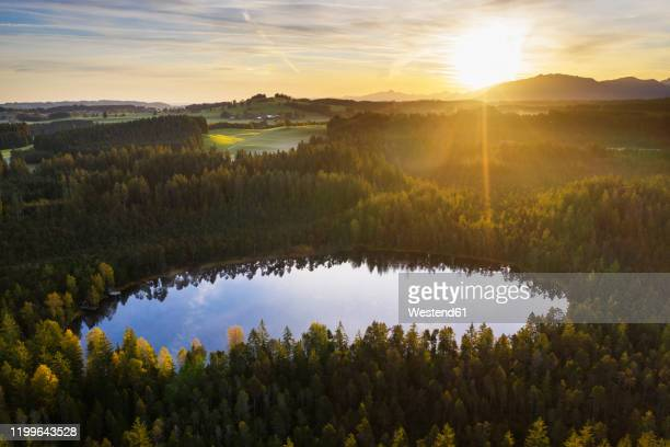 germany, bavaria, upper bavaria, pfaffenwinkel, steingaden, nature reserve klapperfilz, moorsee at sunrise - nature reserve stock pictures, royalty-free photos & images