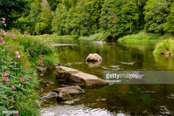 Germany, Bavaria, Upper Palatinate, Bavarian Forest, near Regenstauf, River Regen, himalayan balsam and foldboat