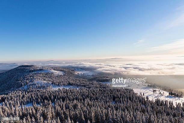 Germany, Bavaria, View from summit of Grosser Arber at Bavarian Forest