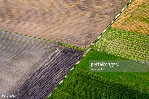 Germany, Bavaria, View of fields, aerial view