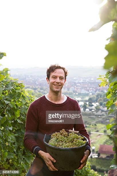 Germany, Bavaria, Volkach, smiling winegrower holding harvest basket