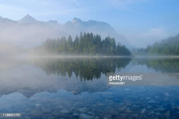 germany, bavaria, werdenfelser land, isar dam kruen, morning fog - nationalpark stock-fotos und bilder
