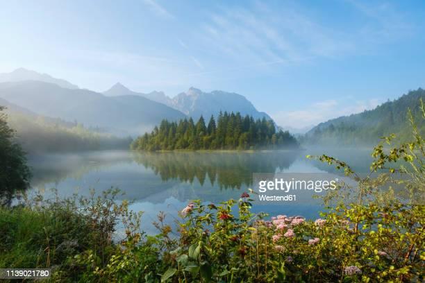 germany, bavaria, werdenfelser land, isar dam kruen, morning fog - krün stock-fotos und bilder