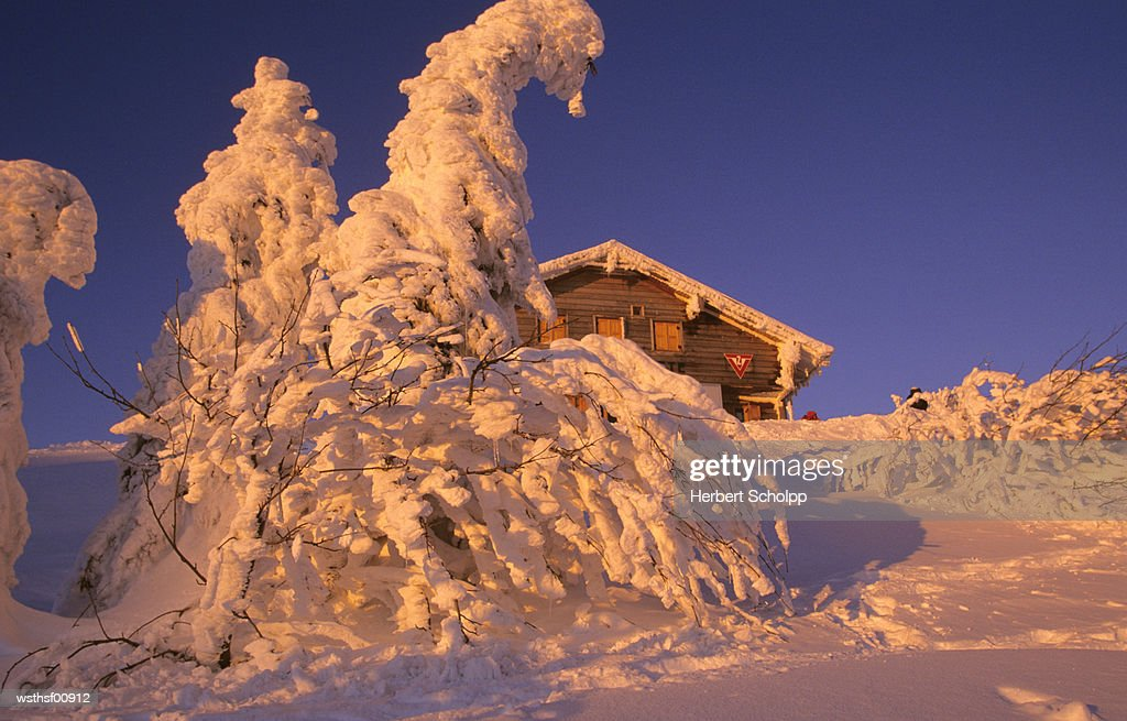 Germany, Bavarian forest, Arbermandl cottage at the Large Arber : Stock Photo