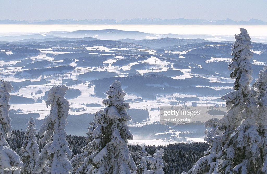 Germany, Bavarian forest, Dreisessel : Stock Photo