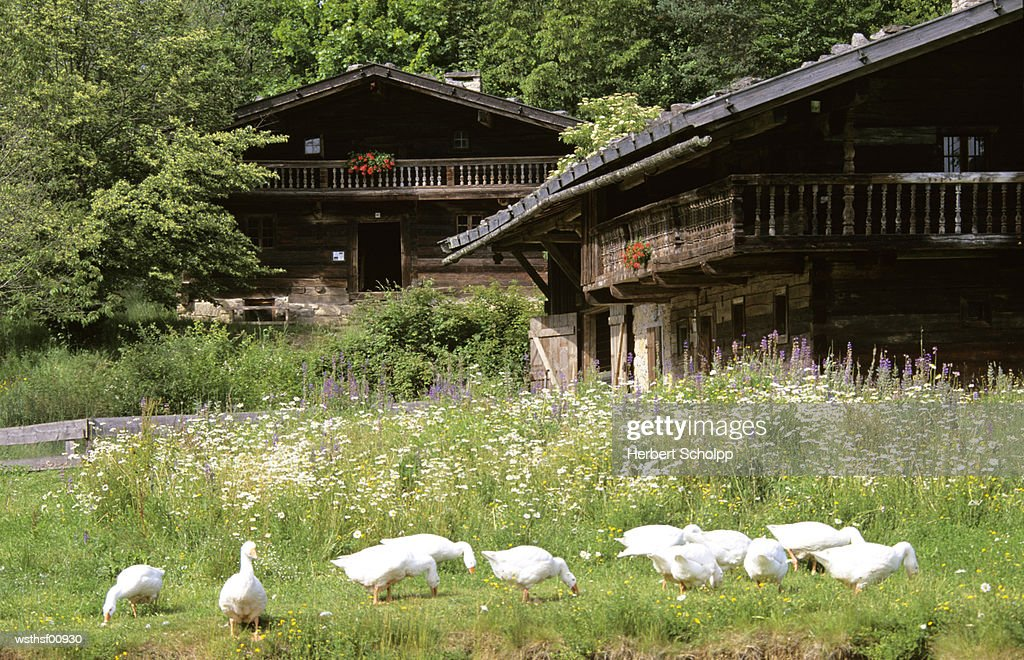 Germany, Bavarian Forest, Farm museum in Tittling : Stock Photo