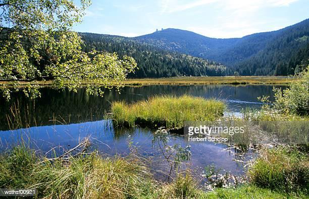 Germany, Bavarian Forest, Kleiner Arbersee