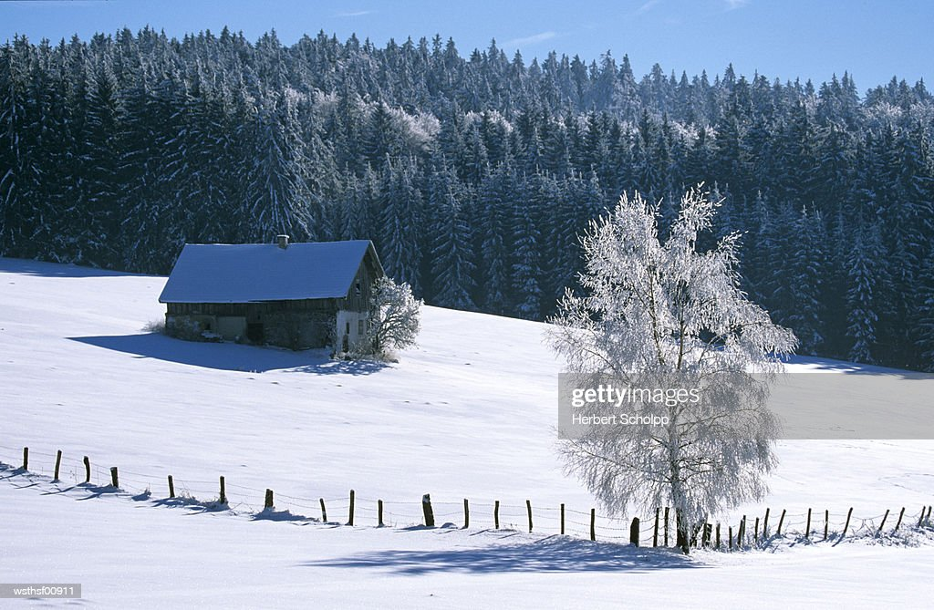 Germany, Bavarian forest, near Breitenberg : Stock Photo