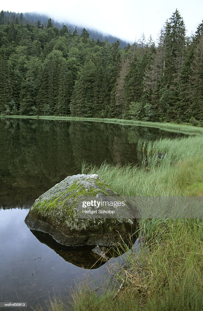 Germany, Bavarian forest, Rachelsee : Stockfoto
