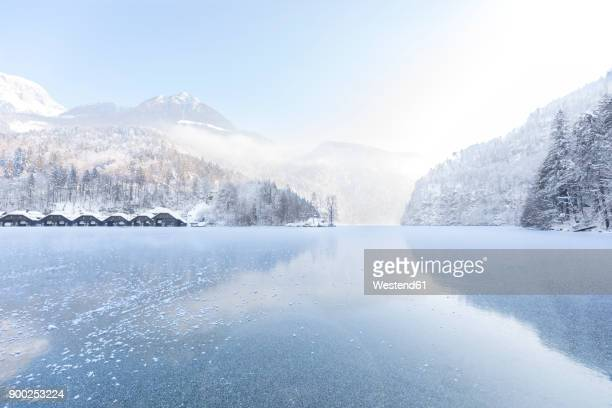 germany, berchtesgadener land, view to frozen lake koenigssee and berchtesgaden alps - königssee bavaria stock photos and pictures