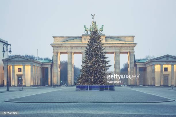 Germany, Berlin, Christmas tree in front of Brandenburg Gate at Pariser Platz