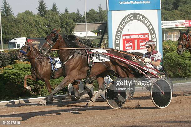 german trotter derby at harness racing track Mariendorf the winner Peter Strooper with Lotis Photo