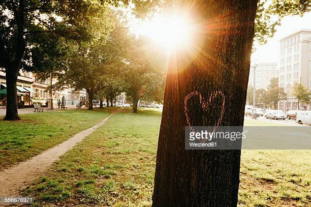 Germany, Berlin, heart painted on tree trunk