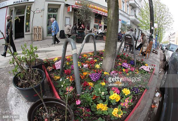 Germany Berlin Prenzlauer Berg Kastanienallee pavement cafe flowers at the bottom of the tree