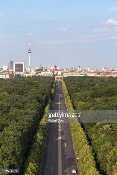 Germany, Berlin, Tiergarten - Vertical view