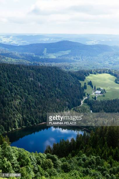 germany , black forest, baden-württemberg, mont feldberg - baden baden photos et images de collection