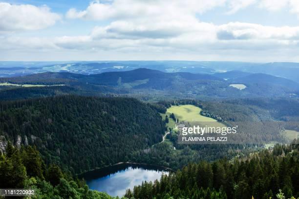 germany , black forest, baden-württemberg, mont feldberg - baden württemberg - fotografias e filmes do acervo
