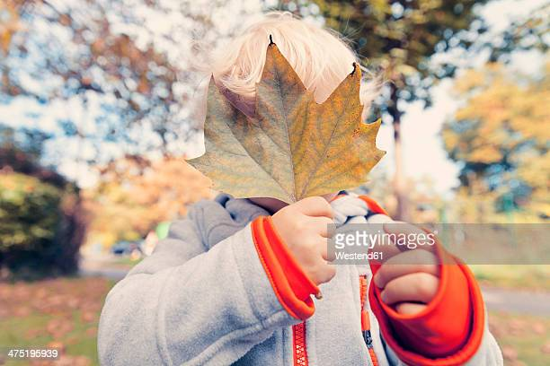 Germany, Bonn, Baby boy covering face with  autumnal leaf i