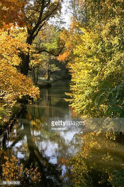 Germany, Brandenburg, Spreewald in autumn