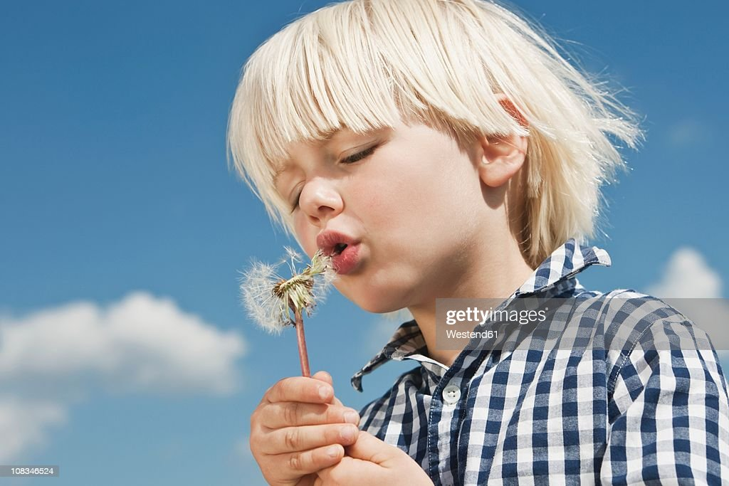 Germany, Cologne, Boy (2-3 Years) blowing dandelion : Stock Photo